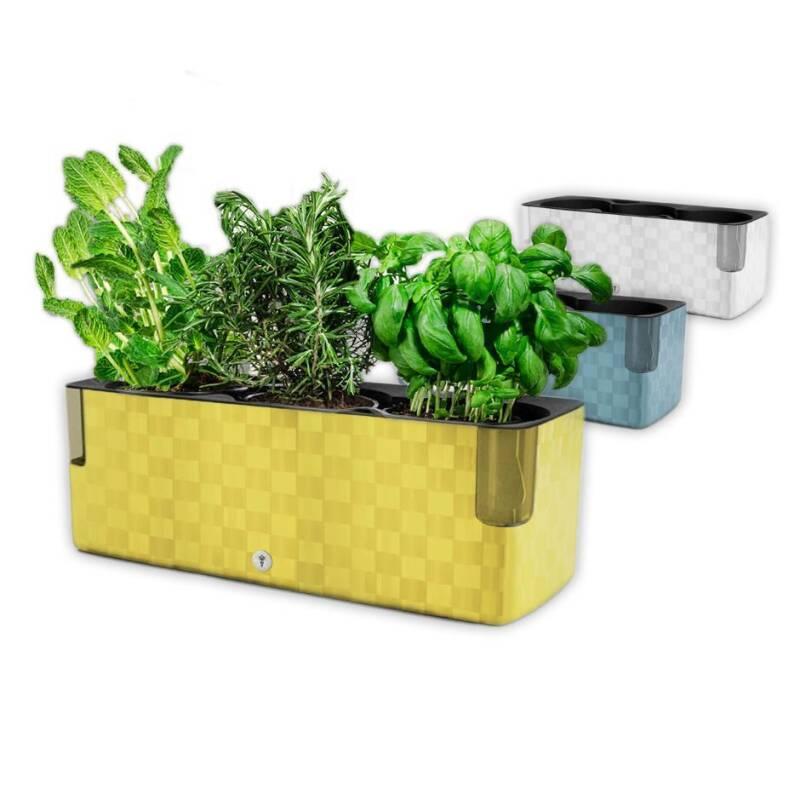 Berühmt Cobble Trio Design Kräutertopf mit Bewässerungssystem Kräuterkasten P MD86